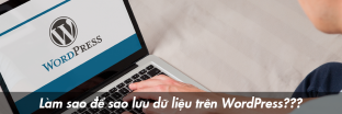 saoluu-wordpress